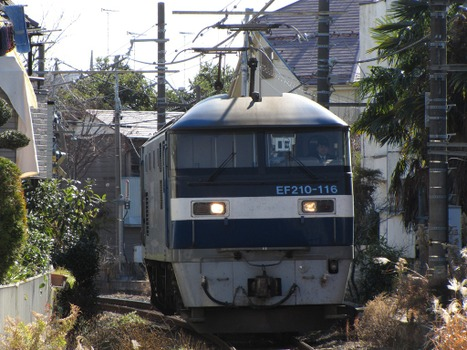 20110106_03